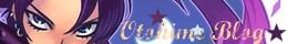 Mon ancien blog avec plus de 500 articles ^^